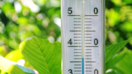 Der Sommer 2019 im Landkreis war kein schlechter. Im Juli stieg das Thermometer in Syrgenstein über die 35-Grad-Marke.