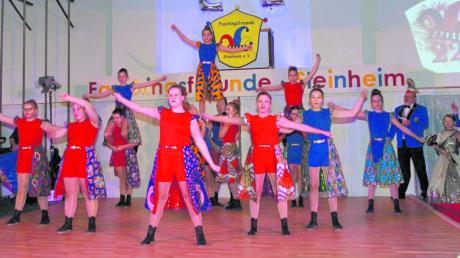Als Schwanenprinzessin begeisterte Tanzmariechen Frieda, und mit den Showtänzern des Kleinen Hofstaats der Steinheimer Faschingsfreunde ging es beim Kinderhofball in einen Traumwald.