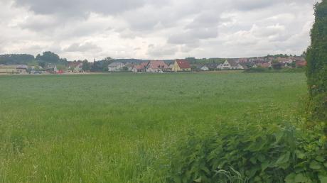 Auf dieser grünen Wiese vor Weisingen soll eine Pflegeeinrichtung entstehen. Der Gemeinderat von Holzheim hat an sich nichts dagegen, nur das Vorgehen des Antragstellers Martin Lipp sorgt – vorerst – für eine Absage an das Projekt.