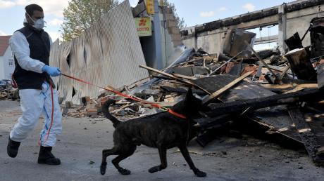 Mit dem Brandmittelspürhund Califax untersuchte die Kriminalpolizei am Mittwoch noch einmal die Ruine der Höchstädter Edeka-Filiale. Die Kripo geht nach wie vor von Brandstiftung aus.