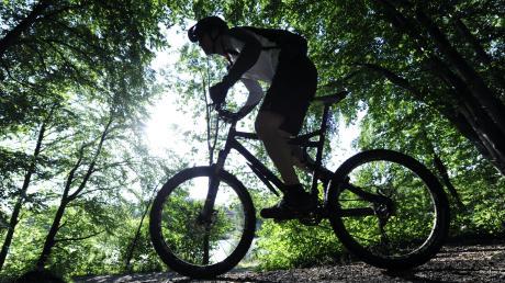 Im Gundelfinger Wald haben Unbekannte eine Mountainbike-Strecke angelegt. Das Bild ist ein Symbolbild.