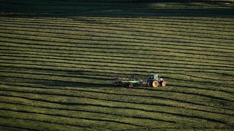 Nicht immer geht es in der Landwirtschaft so idyllisch zu wie auf diesem Bild. Immer häufiger müssen sich Landwirte wegen Themen wie Tierwohl oder Umweltschutz rechtfertigen. Die Bauern selbst beklagen, dass sie zum Sündenbock gemacht werden.
