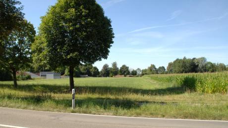Auf dem Papiermühlfeld zwischen Wittislingen und Zöschlingsweiler soll der neue Edeka gebaut werden. Den Bauantrag hat der Gemeinderat nun abgesegnet. Die Fläche im Bild wird wohl nicht mehr lange so aussehen.