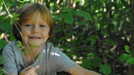 Psst, nicht verraten: Das ist der Geheimtunnel, den der fünfjährige Anton im Naturkindergarten Obstwichtel in Höchstädt gebaut hat.