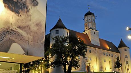 Der neue Pflegestützpunkt soll gleich im Höchstädter Schloss untergebracht werden, fordern die drei Bezirksräte Johann Popp, Heidi Terpoorten und Alois Jäger.
