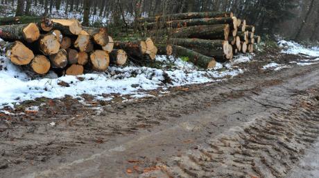 Im Finninger Staatswald wird derzeit gerade der Wintereinschlag durchgeführt. Vor allem dicke Eichen werden gefällt, gerückt und dann bei einer Versteigerung in Bopfingen ausgelegt. Die Waldarbeiter hinterlassen Spuren – das stößt bei manchen Bürgern auf Kritik.