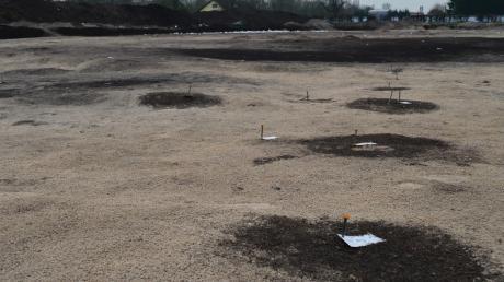 Die dunklen Verfärbungen auf dem Papiermühlfeld zwischen Wittislingen und Zöschlingsweiler lassen auf alte Pfahlstellen schließen, die bis zu 3000 Jahre alt sein könnten – und damit auf Siedlungen. Doch wie sinnvoll sind archäologische Untersuchungen wie diese?