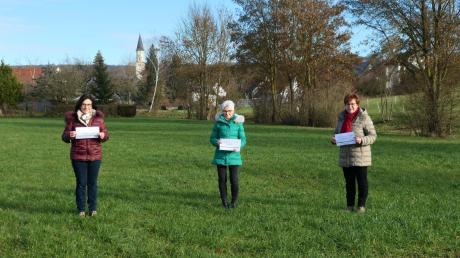 Gisela Heim, Annemarie Oblinger und Gertrud Hohenstatter (von links) vom Landvolk Finningen übergeben ihre Spenden.