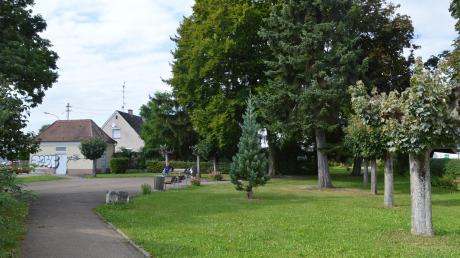 So unansehnlich sieht der Königsgarten in Lauingen heute aus. Doch das könnte sich bald ändern. Bis 2023, dem Jubiläumsjahr des Erwerbs durch die Stadt, soll er nach Willen des AK Lebenswertes Lauingen umgestaltet werden.