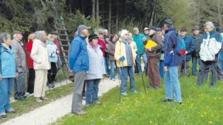Natur pur in der Region: Die Senioren-Wanderung des Regionalvereins SoMit führte rund um Daiting.