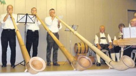 Die Alphornbläser beim 20. Musikantentreffen in Fünfstetten in Aktion.