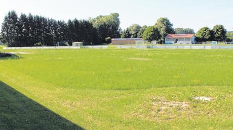 Frei von Altlasten im Boden ist dieses Grundstück neben dem Sportplatz in Feldheim. Das haben jetzt Untersuchungen ergeben.