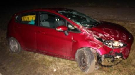 Totalschaden entstand an diesem Auto, nachdem die Fahrerin mehreren über die Straße laufenden Füchsen ausweichen wollte.