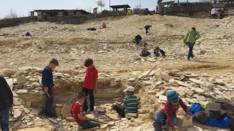Auch für Kinder und Familien ein Fossilienparadies: der Besuchersteinbruch am Schaudiberg zwischen Mühlheim und Tagmersheim.