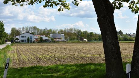 Auf diesem Acker, unweit des Kindergartens, entsteht das neue Baugebiet in Münster. 22 einzelne Parzellen sind geplant.
