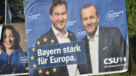 Europawahl_Plakate_Wemding_1.jpg