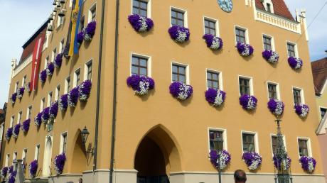 Wer regiert künftig im Donauwörther Rathaus? Diese Frage beantwortet die Kommunalwahl im März.