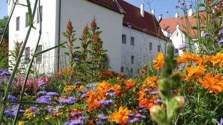 Seit der Gartenschau sind das Gelände rings ums Schloss und der angrenzende Stadtpark eine attraktive Grünfläche mit bunten Akzenten und Aufenthaltsqualität.