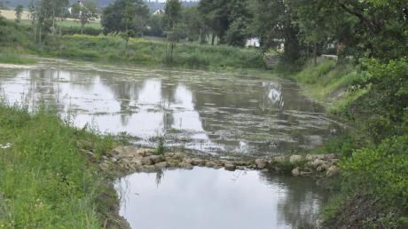 Die ausgebaggerten Regenrückhaltebecken an Möhren- und Krumbach am Ortsrand von Otting haben möglicherweise Schlimmeres verhindert.