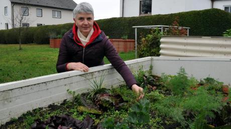 Im Garten von Brigitte Fröhlich in Tapfheim hat der Bund Naturschutz in Bio-Dill Spuren von Unkrautvernichtungsmittel gefunden und damit nachgewiesen, dass auch dort, wo keine Spritzmittel eingesetzt werden, sich diese absetzen.