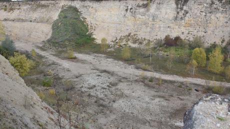 """Eine Interessengemeinschaft in Heroldingen möchte die Kiesgrube am Badersberg als """"Biotop"""" erhalten. Jetzt soll der Stadtrat darüber entscheiden, wie bei der Angelegenheit weiter verfahren wird. Bekanntlich möchte der AWV Erdaushub in der gewaltigen Grube ablagern."""