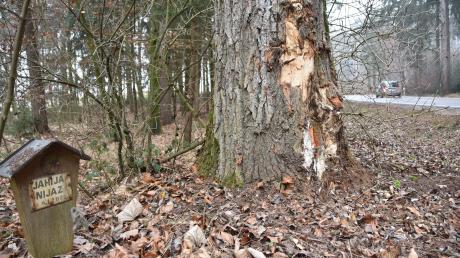 Zwei Unglücke werden hier auf einen Blick sichtbar: Das Marterl links erinnert an einen tödlichen Unfall vor 20 Jahren auf der Staatsstraße nahe Heidmersbrunn. Rechts der beschädigte Baum nach einem neuerlichen Aufprall.