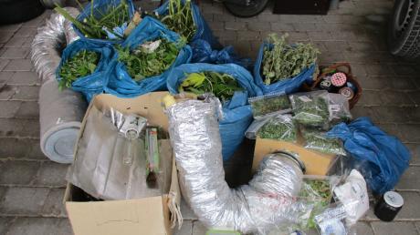 Ein Beispiel dafür, dass es in der Region viele Drogen gibt: In Donauwörth entdeckte die Polizei im Vorjahr eine Cannabisplantage in einem Gewächshaus. Hier das sichergestellte Material.