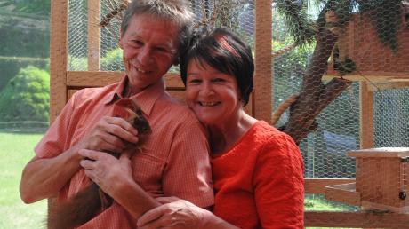 Die vergangenen Wochen haben Karl und Anita Grüneis aus Wemding ein Eichhörnchenbaby großgezogen, das eine Katze gefangen hatte. Die Tochter des Paares taufte den Kleinen auf den Namen Fridolin. Die Grüneis fütterten den Kleinen am Anfang mit Katzenbabynahrung über eine Spritze.