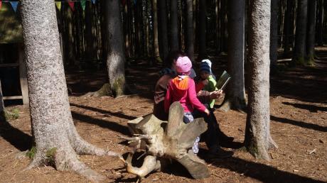 Viel Zeit in der Naturkönnen die Kinder in einem Waldkindergarten verbringen.