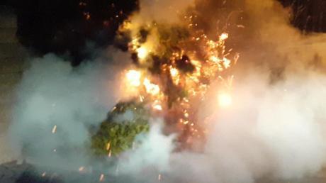 In Oberndorf hat in der Nacht auf Donnerstag eine Hecke lichterloh gebrannt.