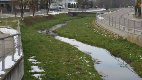 Im 2014 neu ausgebauten Bachbett der Ussel in Daiting hat sich eine Humusschicht abgesetzt. Zudem wächst links und rechts des Wasserlaufs Gras – alles Faktoren, die eine Flut im Ort begünstigen, so ein Experte.