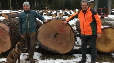 Helmut Weixler (rechts) und Leonhard Huber am teuersten Stamm des Forstbetriebs Kaisheim.