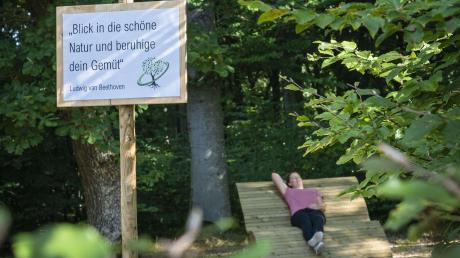 Urlaub in der Natur: Die Stadt Wemding hat im vorigen Jahr zwei neue Waldbaden-Ruheorte geschaffen. Die Kommune will auch in Zukunft auf dieses Tourismus-Segment setzen.