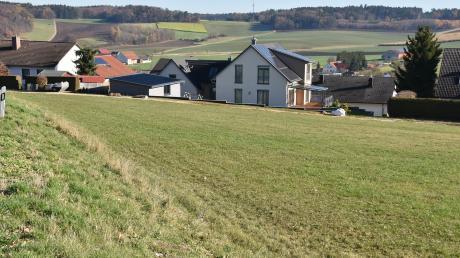 In diesem Bereich am südlichen Ortsende von Wolferstadt soll ein neues Baugebiet entstehen. Doch hier brüten auch Feldlerchen.