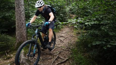 """Solche Pfade durch den Wald – in der Szene werden sie als """"Trails"""" bezeichnet – mögen Mountainbike-Fahrer. Der TSV Wemding will im Forst im Umfeld der Stadt solche Wege einrichten."""