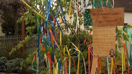 """In Eggelstetten steht diese von den Maibaumfreunden geschmückte """"Hoffnungsbirke"""" im Topf."""