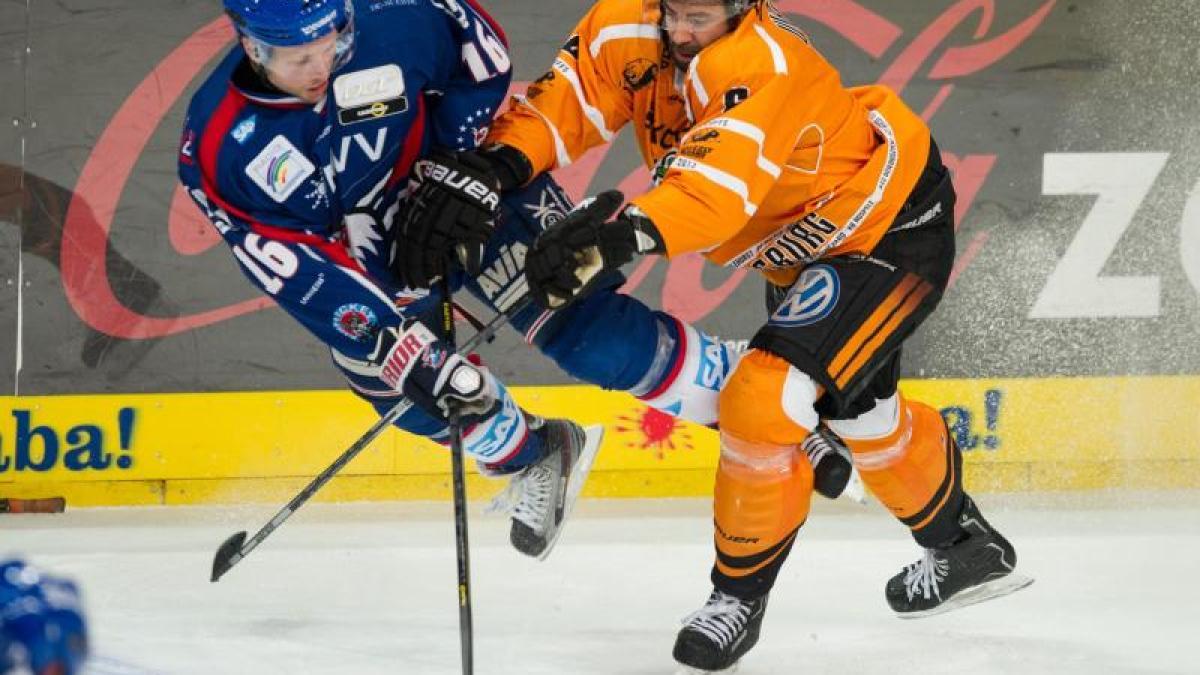 Freezers Eishockey