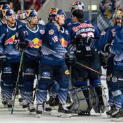 Der EHC Red Bull München hat seine Siegesserie ausgebaut. Foto: Matthias Balk/dpa