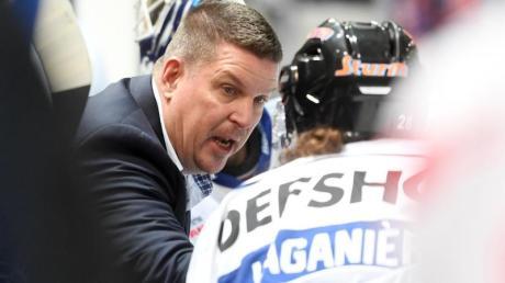 Tom Pokel ist der Trainer der Straubing Tigers. Foto: Tobias Hase/dpa