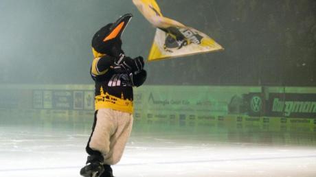Die Krefeld Pinguine benötigen im Kampf gegen die drohende Zahlungsunfähigkeit schnell Geld.