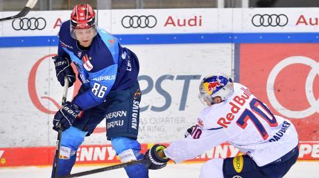 Trifft mit dem ERC Ingolstadt ab Montag in der Play-off-Halbfinalserie auf die Eisbären Berlin: Angreifer Daniel Pietta (links, hier im Duell mit Münchens Maximilian Daubner).