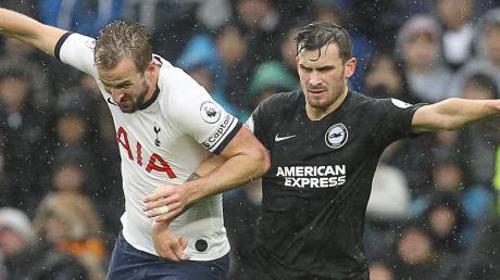 """Im """"Konzert der Großen"""": Der ehemalige Ingolstädter Pascal Groß (rechts) von Brighton & Hove Albion scheut auch mit Tottenhams Stürmer-Star Harry Kane (links) keine Konfrontation."""