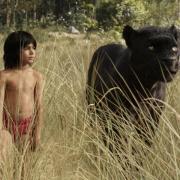 """""""The Jungle Book"""" im TV: Alles zu TV-Termin, Handlung, Cast und Trailer."""