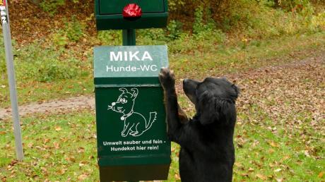 Auch in Steindorf soll es bald Hundetoiletten geben.