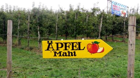 Der Obsthof Mahl im Adelzhausener Ortsteil Haunsried will umbauen und erweitern.