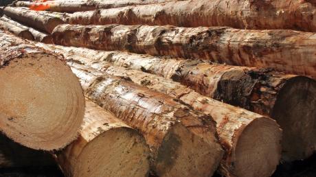 Nicht nur im Landkreis Dillingen ist Holz geklaut worden.