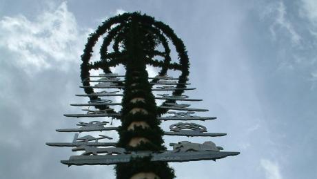 Nicht alle Gemeinden im Landkreis Dillingen stellen heuer einen Maibaum auf.