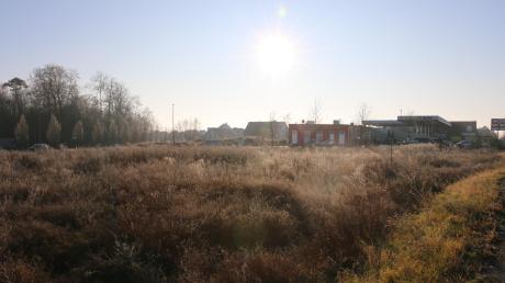 Auf diesem Grundstück im Norden von Kissing wird Fliesen Jeckel sein neues Geschäft bauen.