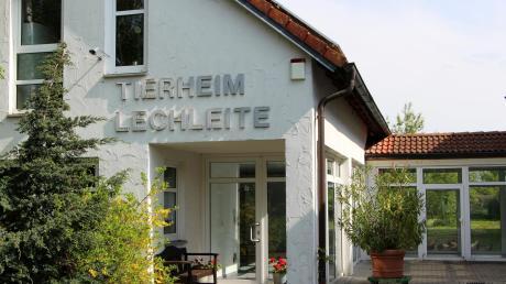 Das Tierheim Lechleite in Derching steckt schon länger in massiven Problemen. Ein Notvorstand muss nun sehen, wie es weitergehen kann.