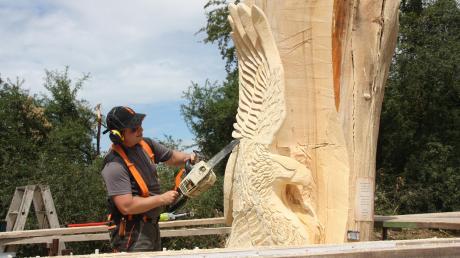 Nach dem zwischen Friedberg und Wulfertshausen der Blitz in einen Baum eingeschlug, möchte nun Hobbyschnitzer Stefan Bauer eine Skulptur aus dem Baum schnitzen. Auf der einen Seite entsteht ein Adler, auf der anderen ein Baum in dem eine Eule sitzt.